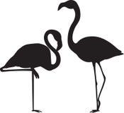 Flamingo-Vektoren Lizenzfreie Stockfotografie