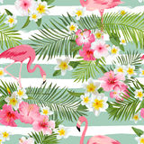 Flamingoachtergrond De tropische achtergrond van Bloemen royalty-vrije illustratie