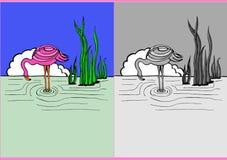 Flamingoen bevattnar in Arkivbild