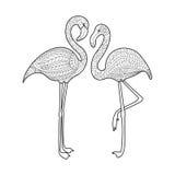 Flamingofärgläggningbok för vuxen människavektor Fotografering för Bildbyråer