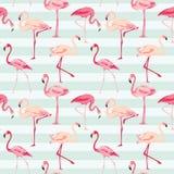 Flamingofågelbakgrund Arkivbild