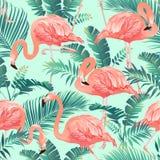 Flamingofågeln och tropiskt gömma i handflatan den sömlösa modellvektorn för bakgrund arkivbilder
