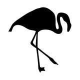 Flamingokontur Royaltyfri Fotografi