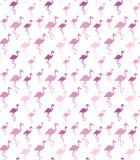 Flamingokontur på vit bakgrund seamless modell Arkivfoton