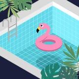 Flamingolivcirkel som svävar i blå simbassängbakgrund vektor illustrationer