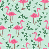 Flamingomodell Arkivbild