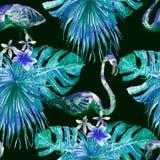 Flamingomodell Sommarvattenfärgbakgrund Royaltyfria Foton