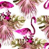 Flamingomodell Sommarvattenfärgbakgrund Arkivbild