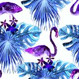 Flamingomodell Sommarvattenfärgbakgrund Arkivfoton