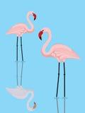 Flamingopaare vektor abbildung
