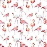 Flamingopatroon vector illustratie