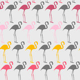 Flamingos. Bright seamless  pattern with flamingos Stock Images