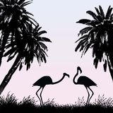Flamingos. Vector illustration of two flamingos Royalty Free Stock Images