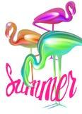 Flamingos coloridos brilhantes extra do sumário ilustração do vetor