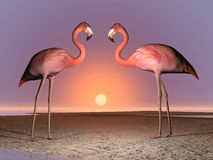 Flamingos date - 3D render Stock Photography