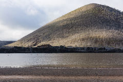Flamingos, ein See und Berg stockfotografie