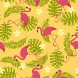 Flamingos exotic seamless pattern Stock Images