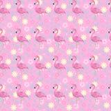 Flamingos florais Fotografia de Stock