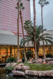 Flamingos at garden of Flamingo Hotel and Casino - Las Vegas, Nevada, USA Royalty Free Stock Photography