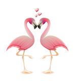 Flamingos heart love valentine concept Royalty Free Stock Images