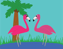 Flamingos in Love. Two flamingos standing in water in the tropics looking at each other lovingly Vector Illustration