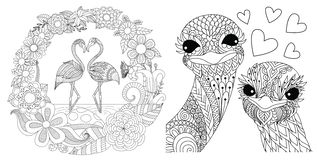 Flamingos and ostriches royalty free illustration
