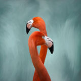 Flamingos Painting royalty free stock images