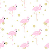 Flamingos and polka dot. Seamless background with flamingos and gold glitter polka dot Royalty Free Stock Photo