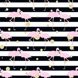 Flamingos, polka dots. stripes. Seamless background with flamingos, stripes and gold glitter polka dot Stock Photos