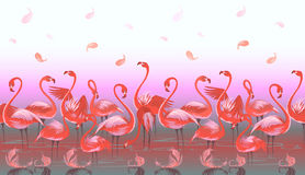 Flamingos. Seamless ornament with birds flamingos, designed for printing on fabric or wallpaper Royalty Free Stock Images