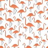 Flamingos seamless pattern Royalty Free Stock Photography