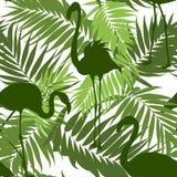 Flamingos sem emenda caqui verdes das folhas de palmeira do teste padrão Imagens de Stock