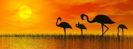 Flamingos by sunset - 3D render Royalty Free Stock Photo