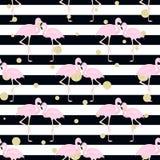 Flamingos, Tupfen streifen Stockfotos