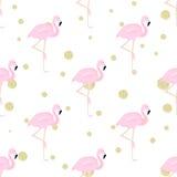 Flamingos und Tupfen Lizenzfreies Stockfoto