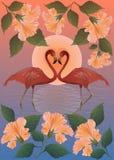 Flamingos vermelhos românticos e a lua Imagens de Stock