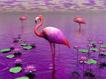 Flamingos and water lilies - 3D render Royalty Free Stock Photo