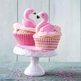 Flamingoschalenkuchen lizenzfreie stockfotos