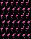 Flamingosilhouet op zwarte achtergrond stock illustratie