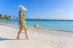 Flamingostrand aruba stockfotografie