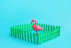 Flamingovogel-Modellspott oben im Zaun auf Farbhintergrund lizenzfreie stockfotos