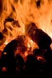 Flamm royaltyfria bilder