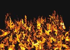 flamm för bakgrund Arkivbilder