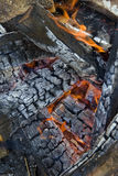 flamm för campfire Royaltyfri Fotografi