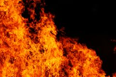 flamm red Fotografering för Bildbyråer