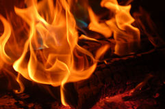 flamma 3 Arkivfoto