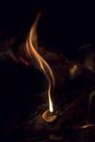 Flamma Fotografering för Bildbyråer