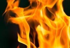 Flamma av brand som bakgrunden Arkivbilder