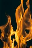 Flamma av brand som bakgrunden Royaltyfria Bilder