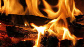 Flamma i en spis stock video